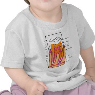 Cross Section Diagram of a Human Tooth Tshirt