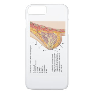 Cross Section Diagram of the Human Mammary Gland iPhone 8 Plus/7 Plus Case