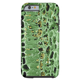 Cross Section of Leaf Tough iPhone 6 Case