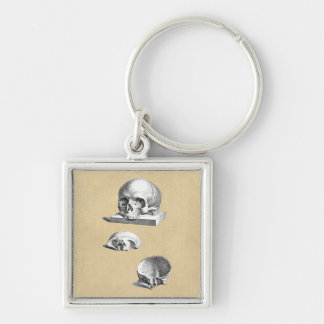 Cross Section of the Human Skull Keychain