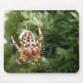 Cross Spider 132 mousepad