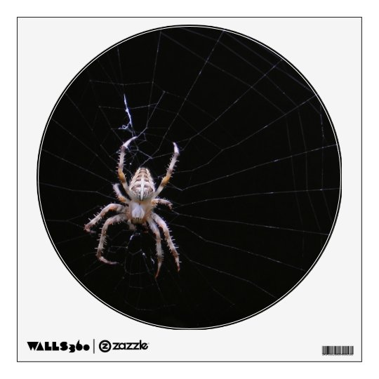 Cross Spider ~ Decal