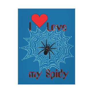 Cross spider in the net canvas