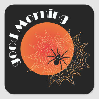 Cross spider in the net with sunrise square sticker