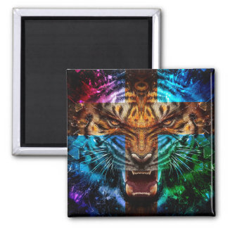 Cross tiger - angry tiger - tiger face - tiger wil magnet