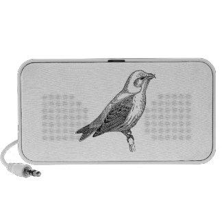 Crossbill Bird Art Travel Speakers