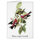 Crossbill Blanco-con alas - John James Audubon Tarjeta De Felicitación