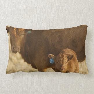 Crossbred cow with calf near Choteau, Montana, Throw Pillow