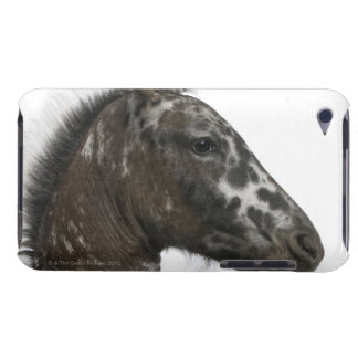 crossbreed Foal between a Appaloosa and a Barely There iPod Case