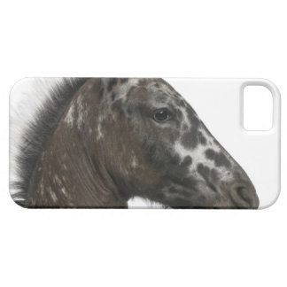 crossbreed Foal between a Appaloosa and a iPhone SE/5/5s Case