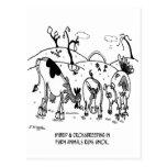 Crossbreeding Run Amok Postcard