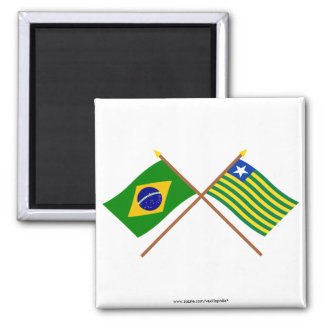 Crossed Flags of Brazil and Piauí Magnet