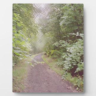 CrossHatch Path.jpg Plaque