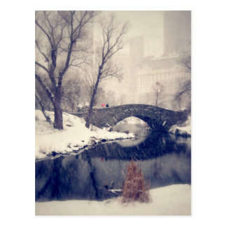 Crossing Bridges Through The Snow In Central Park Postcard