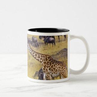 Crossing of the Mara River by Giraffes and Two-Tone Coffee Mug
