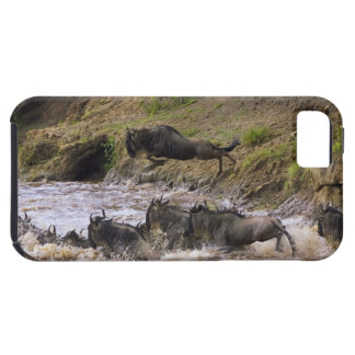 Crossing of the Mara River by Zebras and iPhone SE/5/5s Case