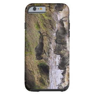 Crossing of the Mara River by Zebras and Tough iPhone 6 Case