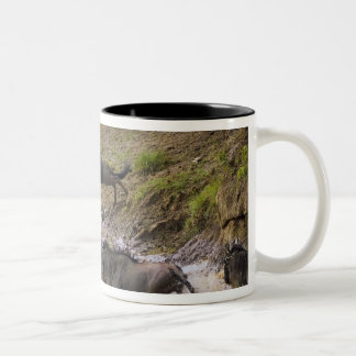 Crossing of the Mara River by Zebras and Two-Tone Coffee Mug