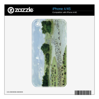 Crossing of the San Joaquin River, Paraguay, 1865 iPhone 4 Decal
