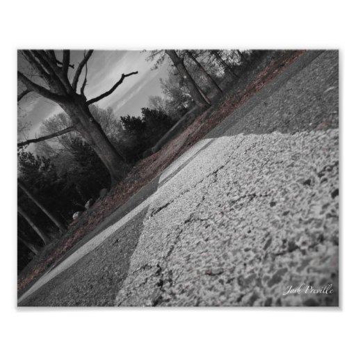 Crossing the Road 8x10 Photo Print
