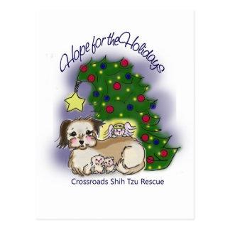 Crossroads Shih Tzu Rescue Hope For the Holidays Postcard