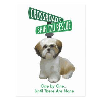 Crossroads ShihTzu Rescue Postcard