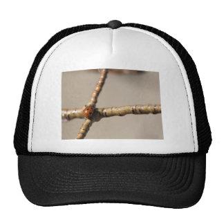 Crossroads Trucker Hat