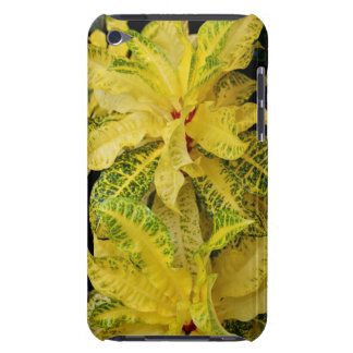 Croton Case-Mate iPod Touch Barely There Case
