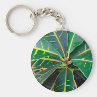 Croton Green Leaves Background Keychain