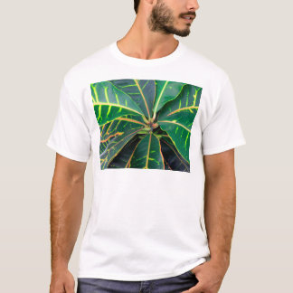Croton Green Leaves Background T-Shirt