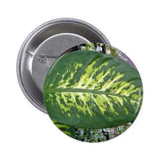 Croton Leaves Texture in Detail Pinback Buttons