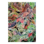 croton_plant_painting poster
