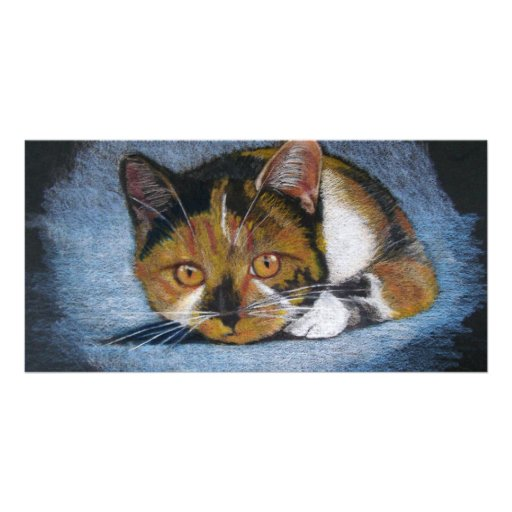 CROUCHING CAT: COLOR PENCIL PHOTO GREETING CARD