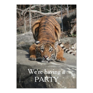 Crouching Tiger Customizable invite