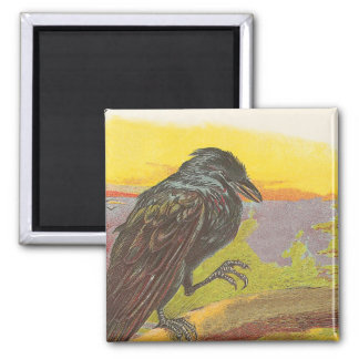 Crow 2 Inch Square Magnet