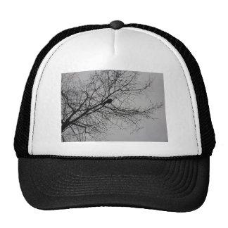 Crow Alone Trucker Hat