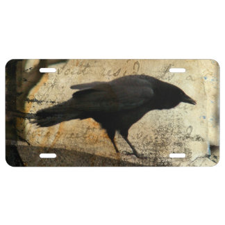 Crow Art License Plate
