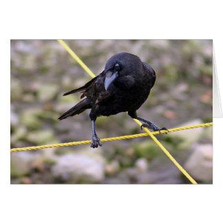 Crow at Crossroads Greeting Card