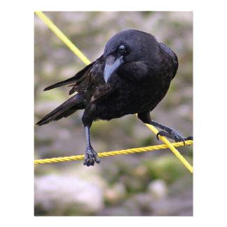 Crow at Crossroads Letterhead Template
