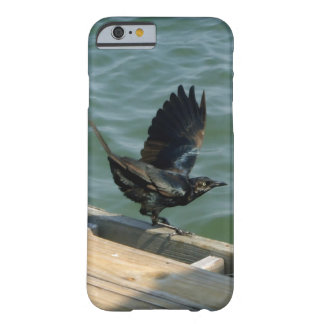 Crow Barely There iPhone 6 Case