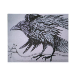 Crow: Black and white Drawing on Canvas wrap.