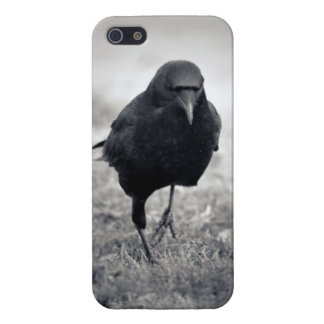 Crow Case For iPhone SE/5/5s