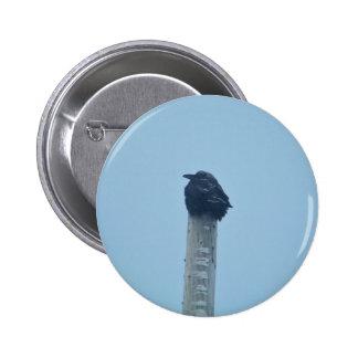 Crow Chillin Button