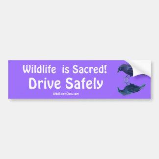 CROW Collection Car Bumper Sticker