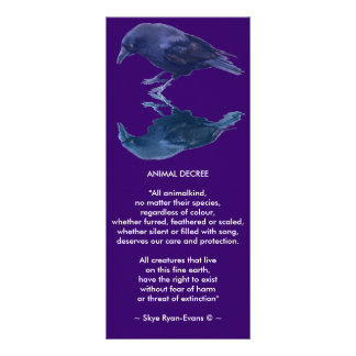 CROW Collection Rack Card