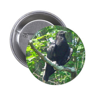 Crow Coordinating Items Button