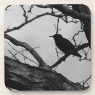 Crow Cork Coaster