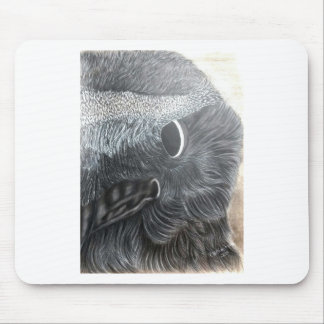 crow eye right side mouse pad