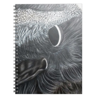 crow eye right side notebook