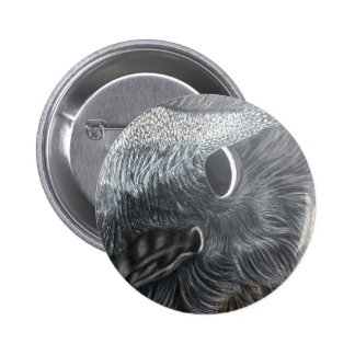 crow eye right side pinback button